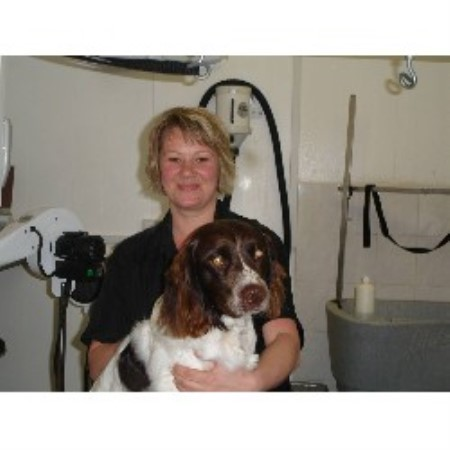 K9 Shine Pet Grooming Seaton Delaval, Northumberland Picture 2