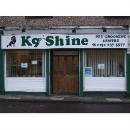 K9 Shine Pet Grooming Seaton Delaval, Northumberland Picture 1
