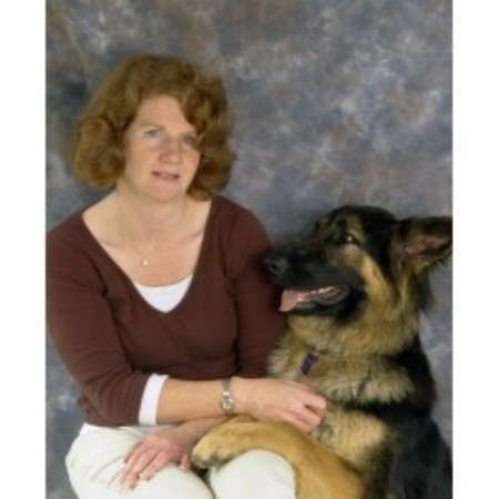 Dog Kennels Denbighshire