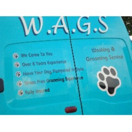 Wags Mobile Dog Wash And Grooming Services