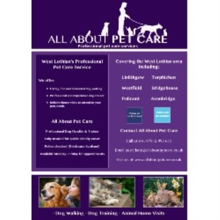 All About Pet Care Westfield