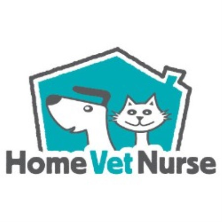 Home Boarding For Dogs In Ayrshire