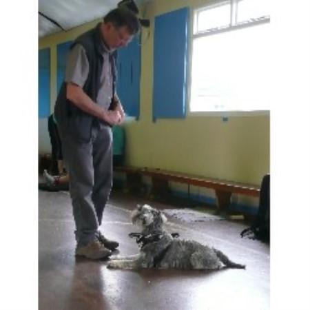 Dog Training Classes Bradford