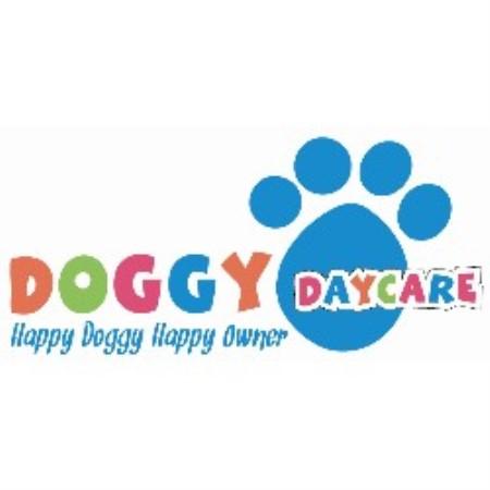 Pets At Home Dog Grooming Ballymena