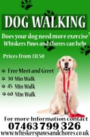 Whiskers Paws and Chores dog walking/Sitting services in Dunsdale, North Yorkshire