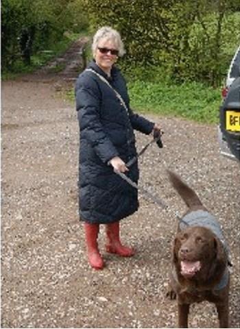 Baker Dog Training Reviews
