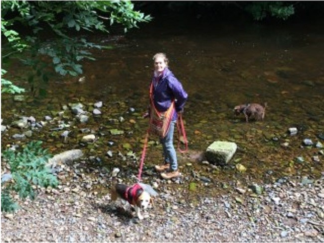 Good Dog Walks In Nottinghamshire