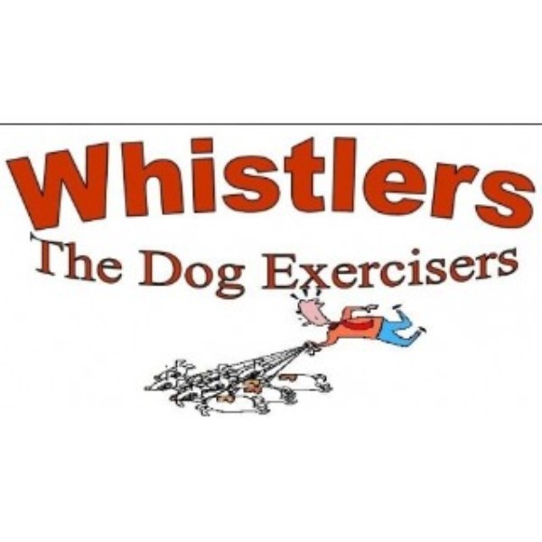 Whistlers the Dog Exercisers Winchester