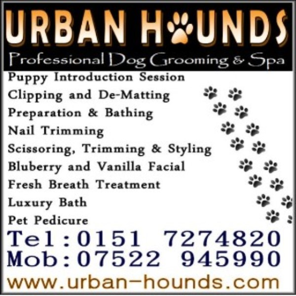 Mobile Dog Grooming Bootle Liverpool