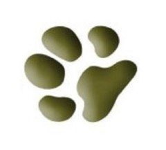 Flying Paws Dog Training Forest Row East Sussex Logo