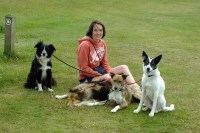 Loyalty to Dogs - Home Dog Boarding & Day Care Okehampton Devon Logo