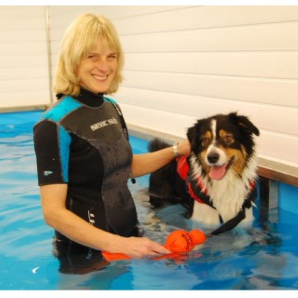 Tip Top Dog Training Pedwell