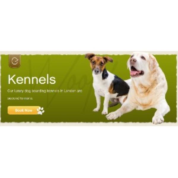 Elmtree Dog Kennels