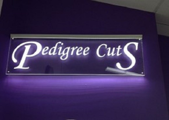 Pedigree Cuts Dog Grooming