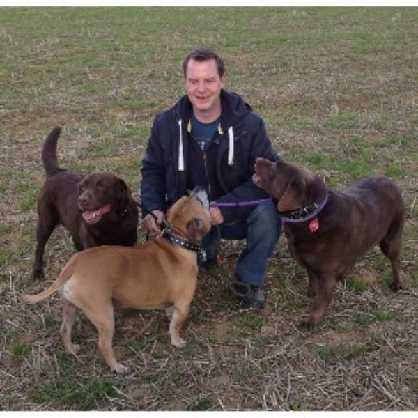 Paws 'N' Claws Dog Walking & Pet Services Northampton