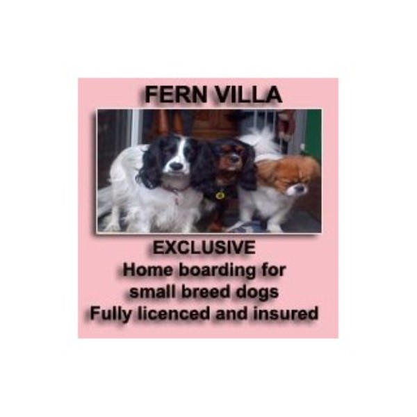 Dog boarding kennels near rotherham south yorkshire for Dog home boarding near me