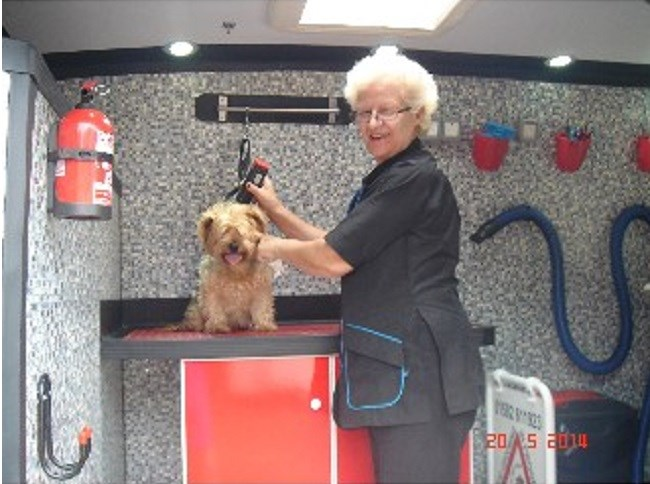 Dial A Wash Dog Grooming