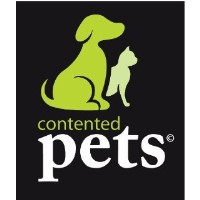Contented Pets dog walking/Sitting services in Abergavenny, Monmouthshire