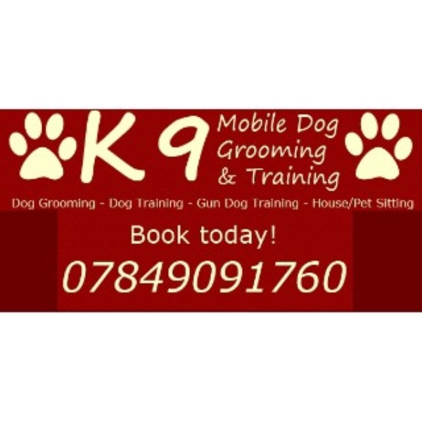l8 mobile dog grooming and house sitting Shaftesbury