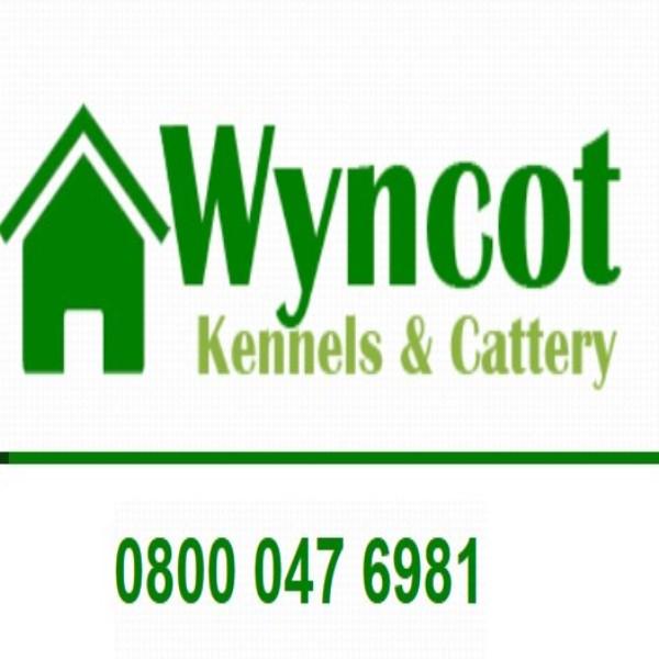 Dog Kennels For Sale Kent