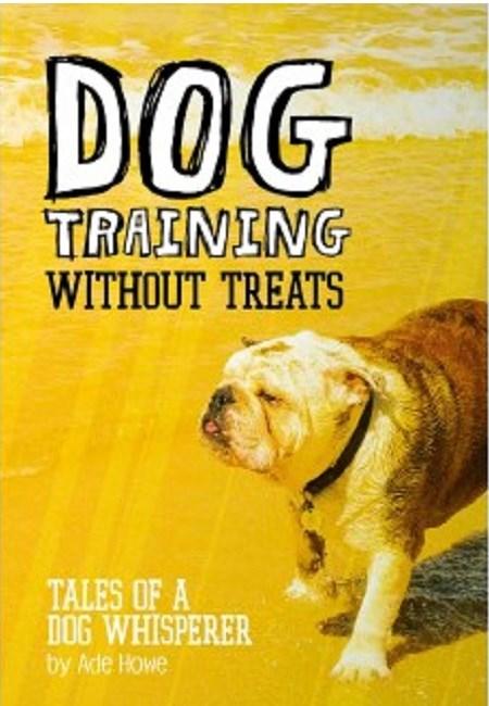 Dog Training Behaviourist Website Information