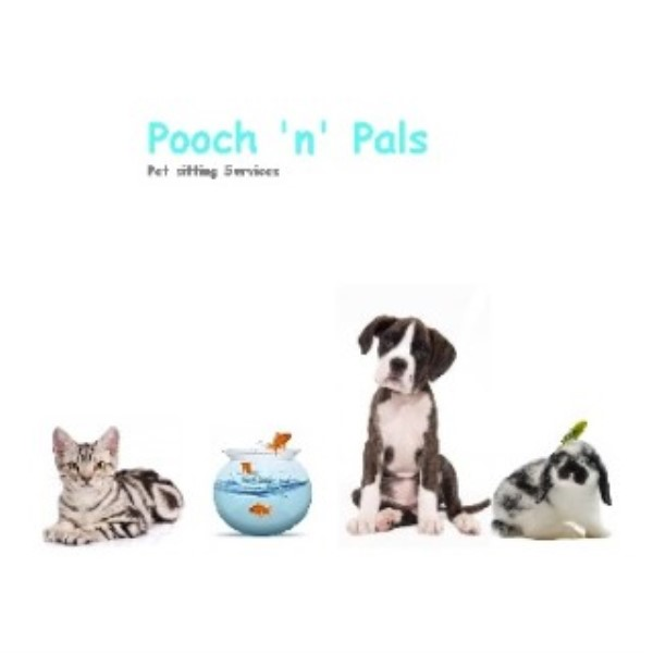 Pooch 'n' Pals Dog Walking & Pet Sitting Doncaster