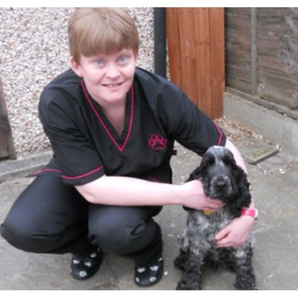 Fine Posh Paws Mobile Dog Grooming Thornton Cleveleys Lancashire Home Interior And Landscaping Analalmasignezvosmurscom