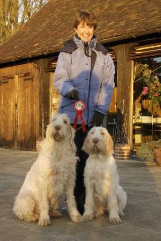 Home Animal Care Stevenage Hertfordshire Sg2 7qa