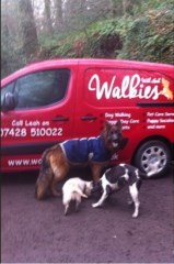 Walkies With Leah Dog Home Boarding and Pet Boarding Bridgwater Somerset Logo