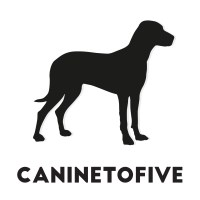 Canine to five Loughton Essex Logo