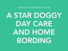 A Star Doggy Day Care and Home Boarding Holsworthy Devon Logo