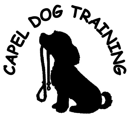 Capel Dog Training