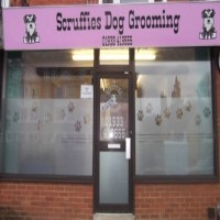 Scruffies Dog Grooming Rushden Northamptonshire Logo