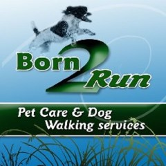 Born 2 Run Pet Care Barnard Castle Durham Logo