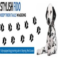 Stylish Fido Steyning West Sussex Logo