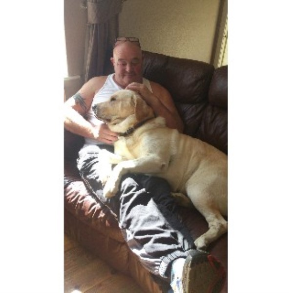 Dog Rescue Aberdeenshire Uk
